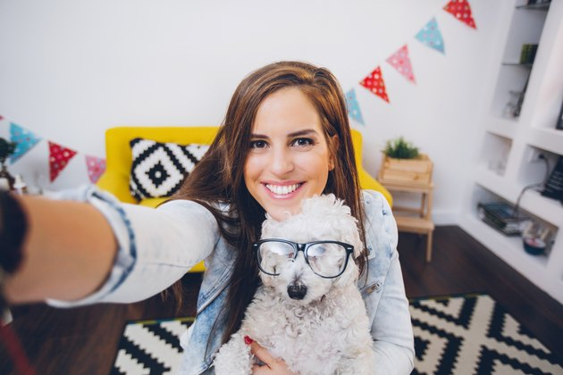woman posing with cute dog wearing glasses