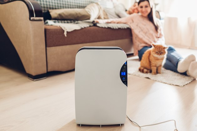woman and cat looking at air purifier in living room