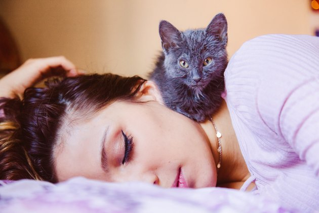 woman sleeping while cat climbs on her