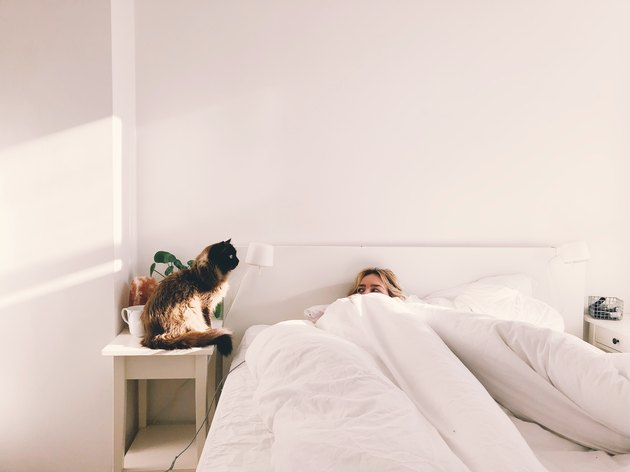 Cat Sitting Next To Woman In Bed