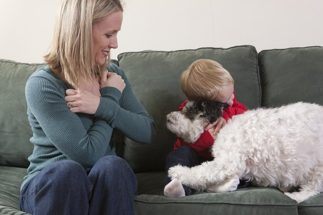 Woman signing the word 'Hug/Love' in American Sign Language with her son hugging a dog