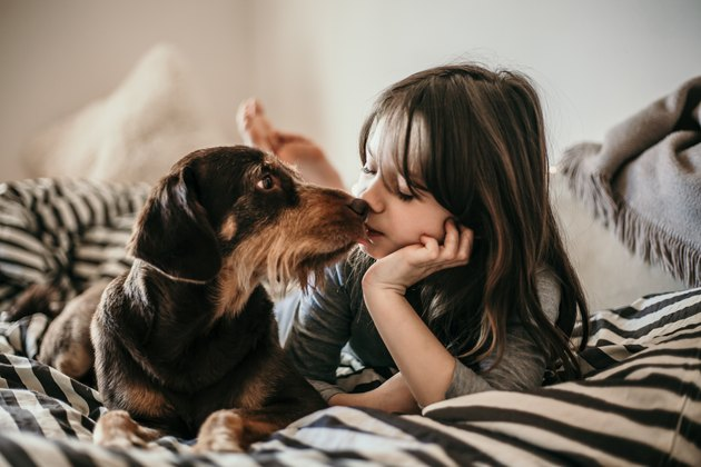 Portrait of little girl and her dog in the bed