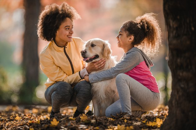 Happy black mother and daughter communicating while spending an autumn day with their retriever in nature.