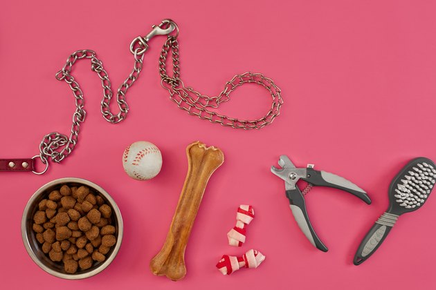 Dog accessories on pink background. Top view. Pets and animals concept