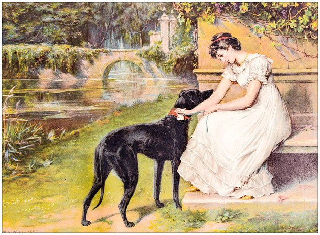 Antique painting illustration: Woman with dog