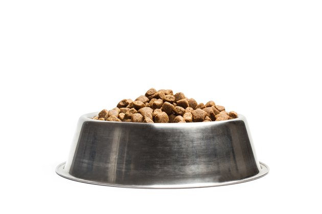 Dog food in a stainless steel bowl