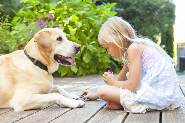 Little girl painting the claws of a dog with bright pink nail polish on a sunny summer afternoon in Portland, Oregon, USA