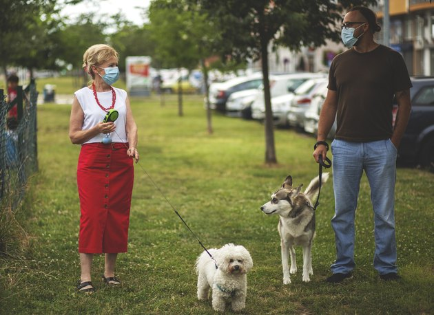 woman and man wearing masks walking their dogs