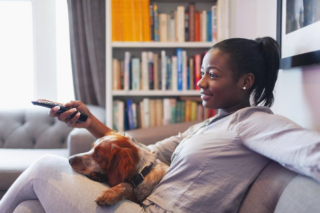 Young woman and dog relaxing, watching TV on living room sofa