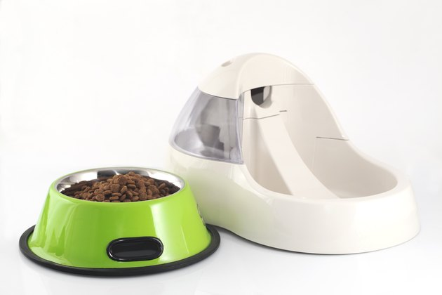 Pet food and electric water bowl
