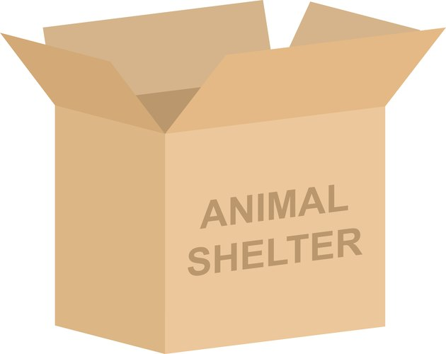 Animal Shelter Charity Box Vector