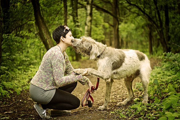 deerhound dog kissing a woman in walking
