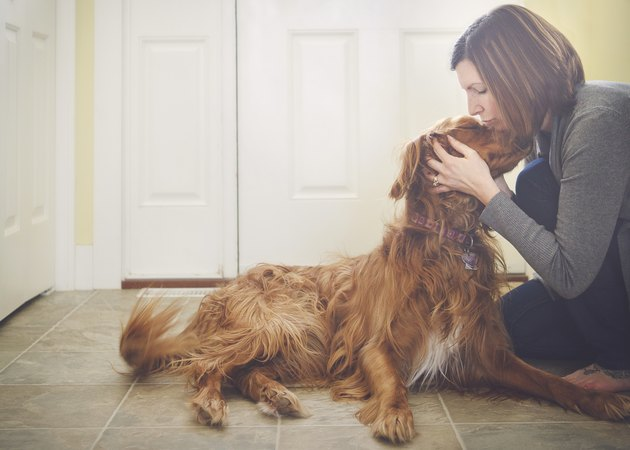 Caucasian woman kissing dog on floor