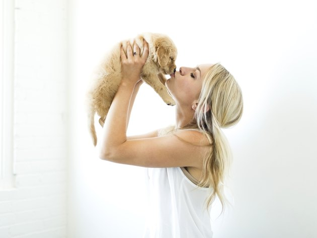 Studio shot of owner kissing Golden Retriever puppy
