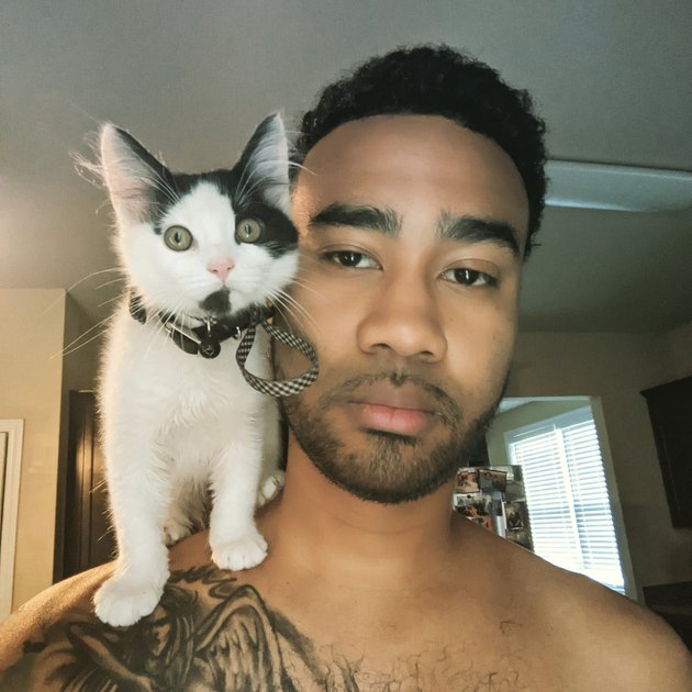 Man with kitten sitting on shoulder