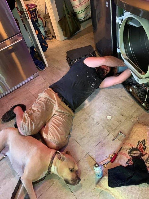 dog helps man repair washer