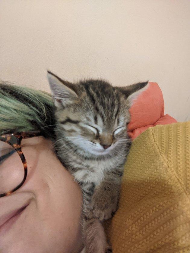 kitty sleeping on a lady's face