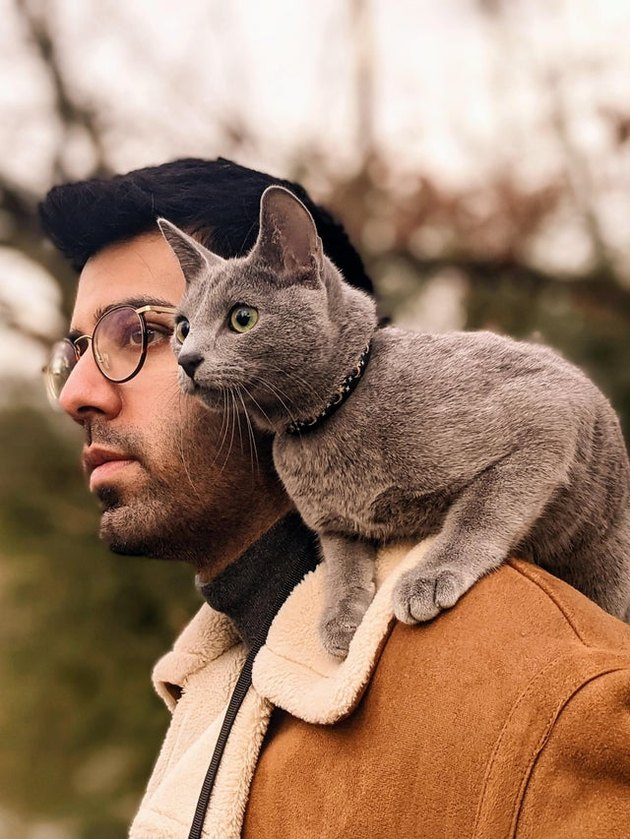 Man with gray cat sitting on his shoulder