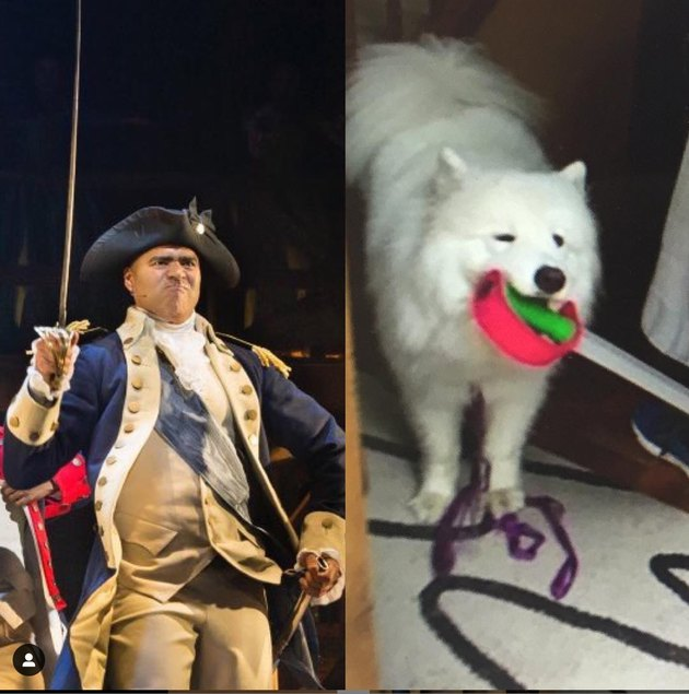 christopher jackson and dog with swords
