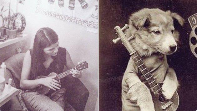 phillipa soo and a dog with ukuleles