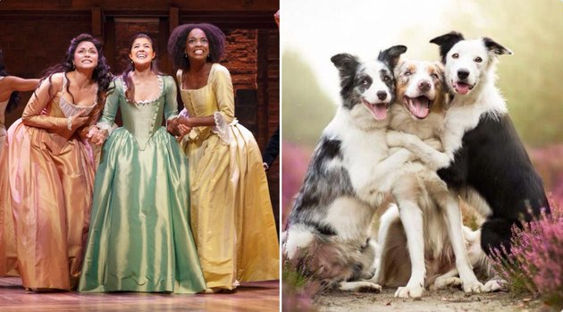 schuyler sisters and dogs hugging