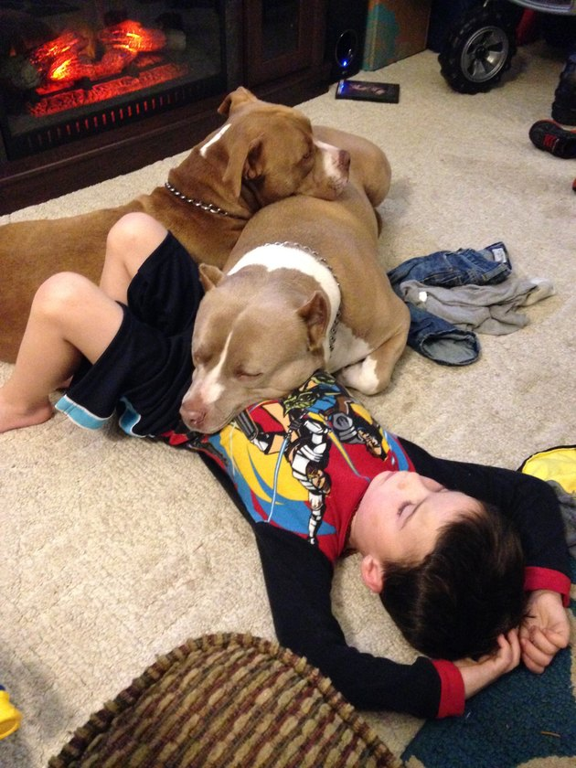 Two dogs and a boy cuddled in front of a fireplace.