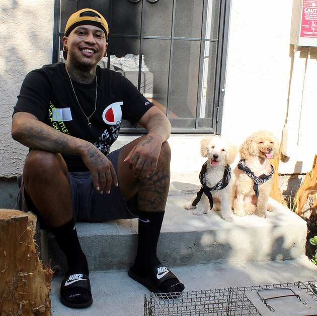 smiling dogs sit with man on stoop