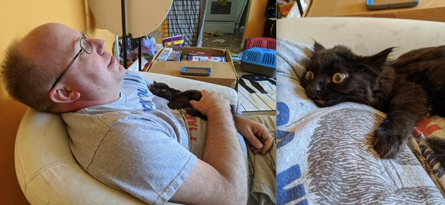 black cat sleeps on man's chest