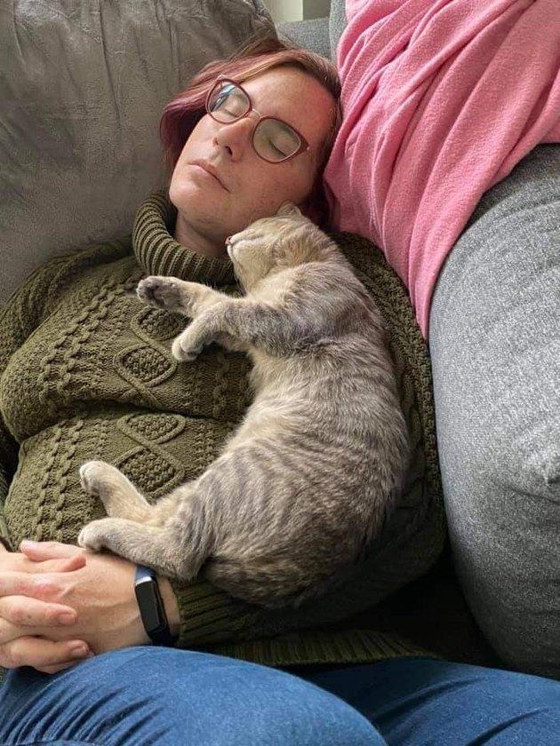 feral cat sleeps on woman