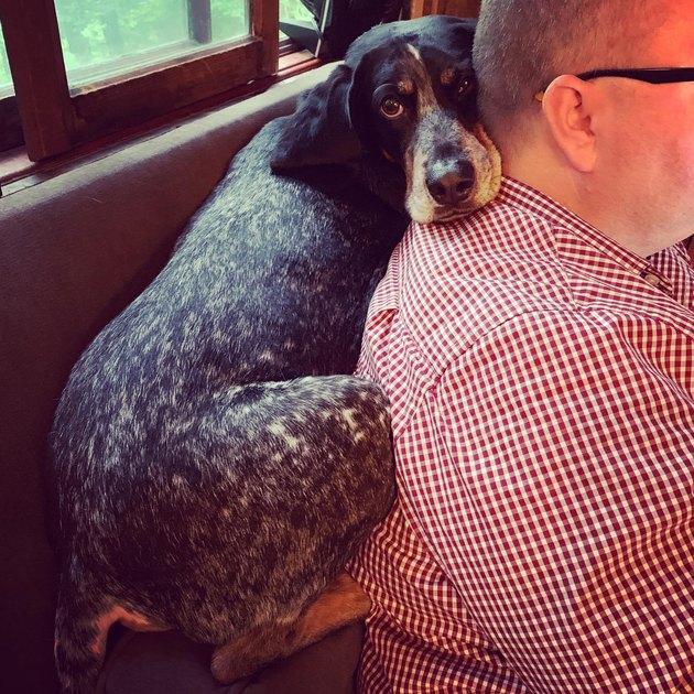 dog nuzzles up on human