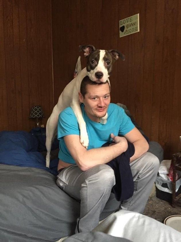 dog on man's head