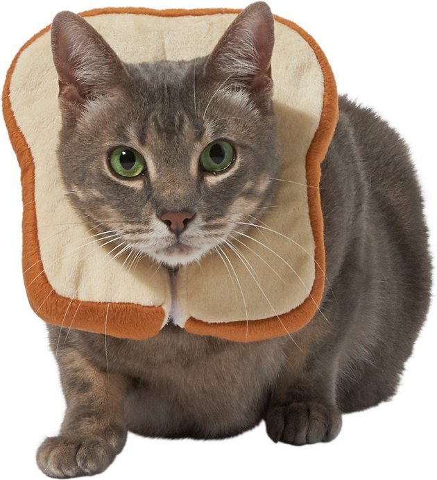 loaf of bread cat costume