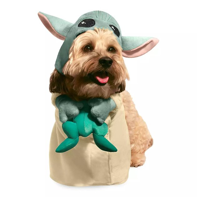 Baby Yoda costume for dogs