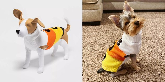 cat and dog candy corn sweater