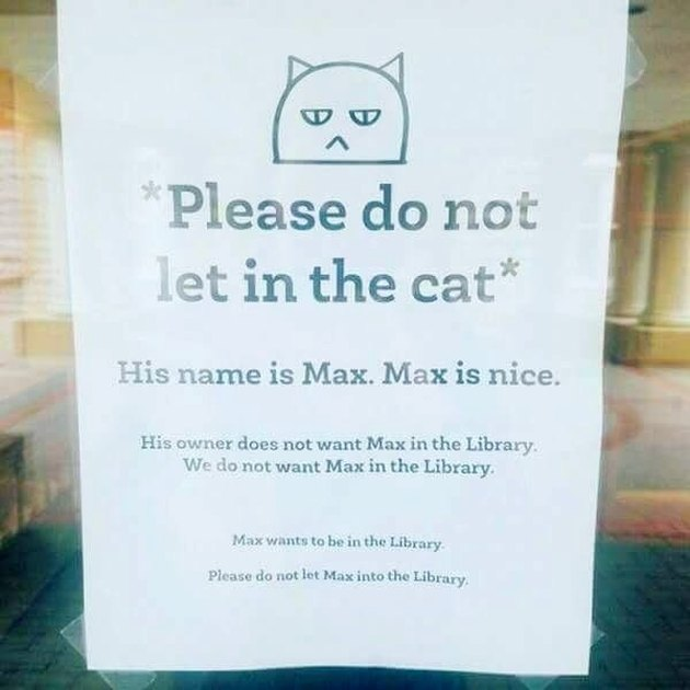 library posts sign telling patrons not to let cat in