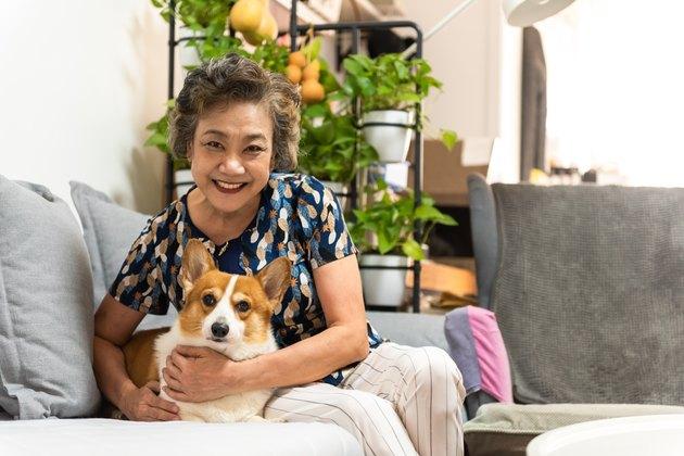 Senior woman holding her dog on sofa. Corgi dog