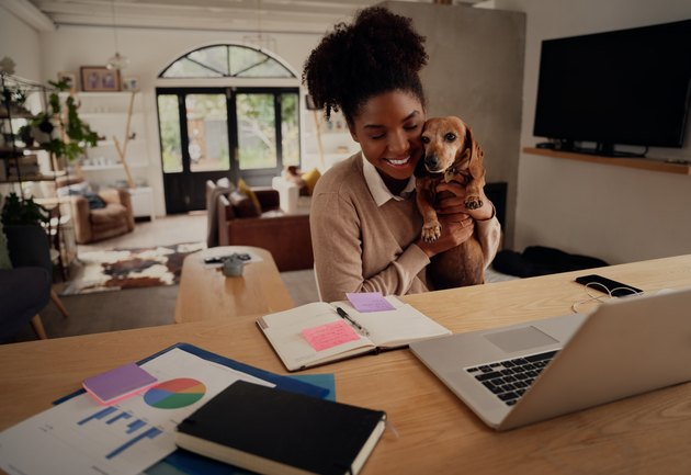 Young woman embracing pet dog while working on laptop at home