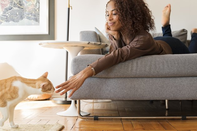 Smiling woman on sofa reaching out to cat