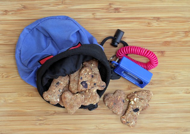 Dog cookies with a training pouch and clicker.  Top view.