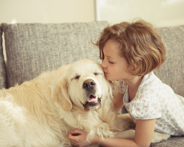 Young girl kissing pet dog