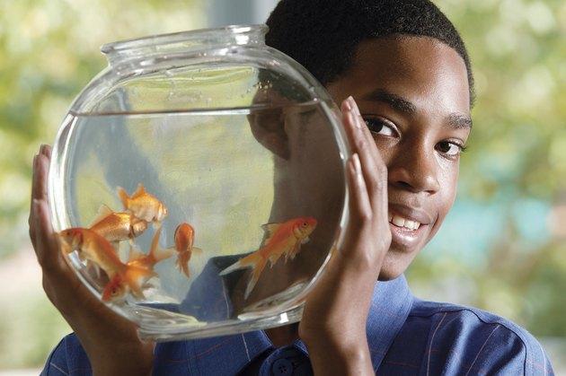 Boy holding goldfish bowl