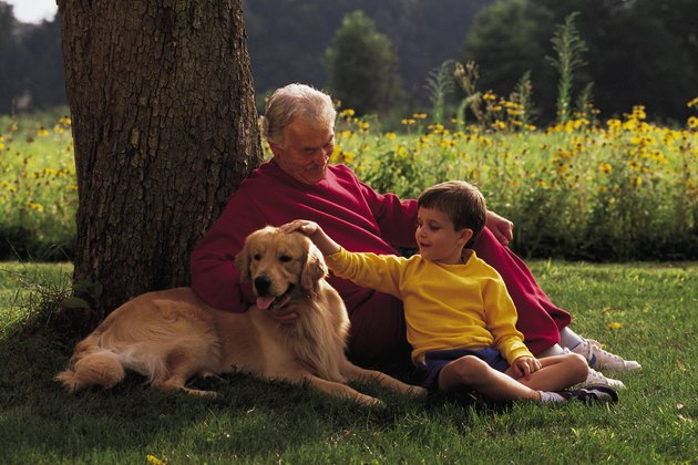 Mature man with grandson and dog under tree