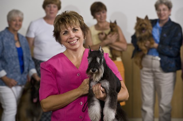 Woman with Miniature Schnauzer
