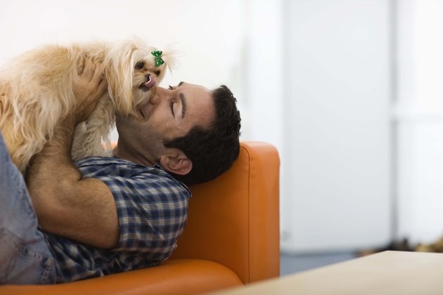 Man relaxing with a dog