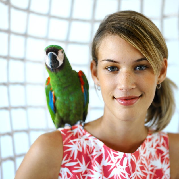 close up portrait of a woman sitting with a parrot on her shoulder