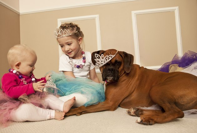 little girl and baby playing dress up with a dog