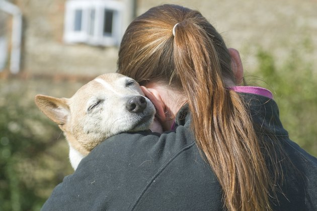 Young Women cuddling a Jack Russell Terrier dog