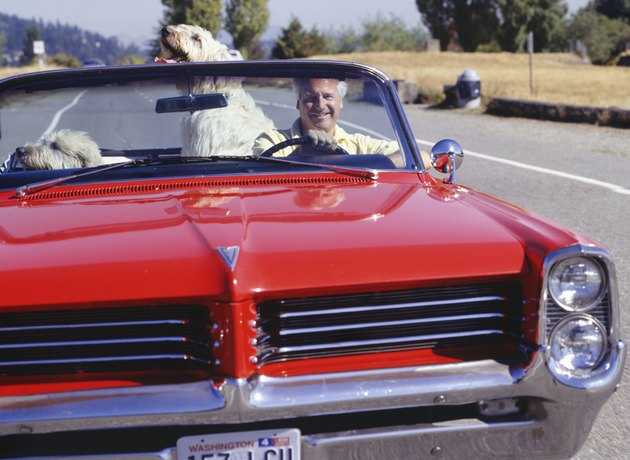 Man driving red convertible car with dogs in countryside