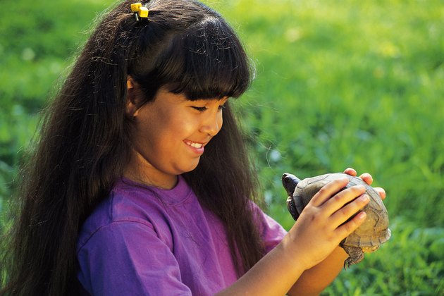 Girl holding box turtle