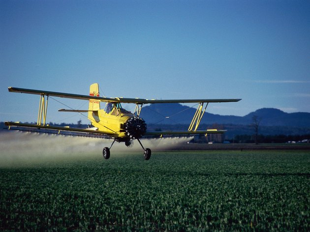 A crop duster flying low and spraying tulip fields